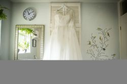 Bridal Gown on the hanger